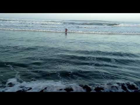 Grandes Pescados (Liza)  De Playa