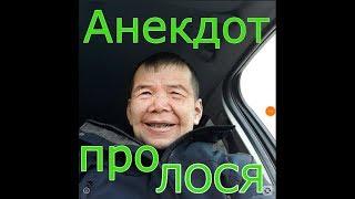 Убойный анекдот про ЛОСЯ-НАРКОМАНА