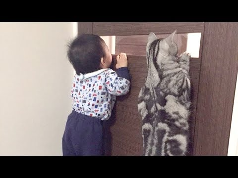 TRY NOT TO LAUGH at FUNNY KIDS - Best FUNNY KID & BABY compilation