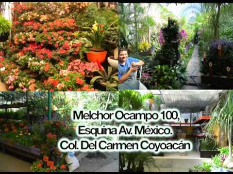 Exposici n permanente de floricultura y viverismo en los for Viveros plantas en temuco
