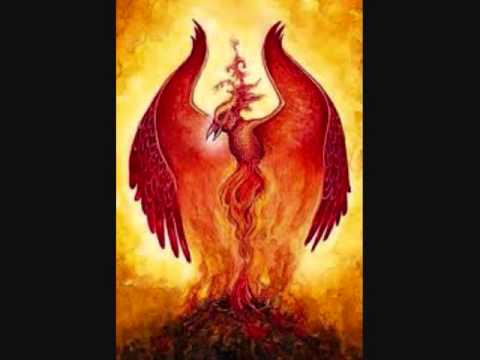 The Year of the Rooster or Phoenix - Taoist/Oriental Astrology (Wu Xing)