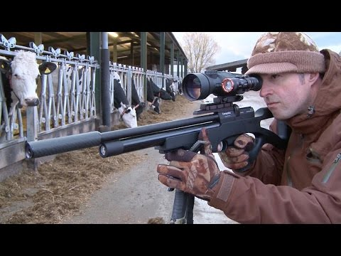 The Airgun Show – Day & Night Rat Hunting With The ATN X Sight II, PLUS The Cometa Orion SPR On Test
