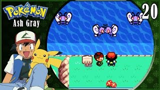 Pokémon Ash Gray | Capítulo 20: Adiós Butterfree