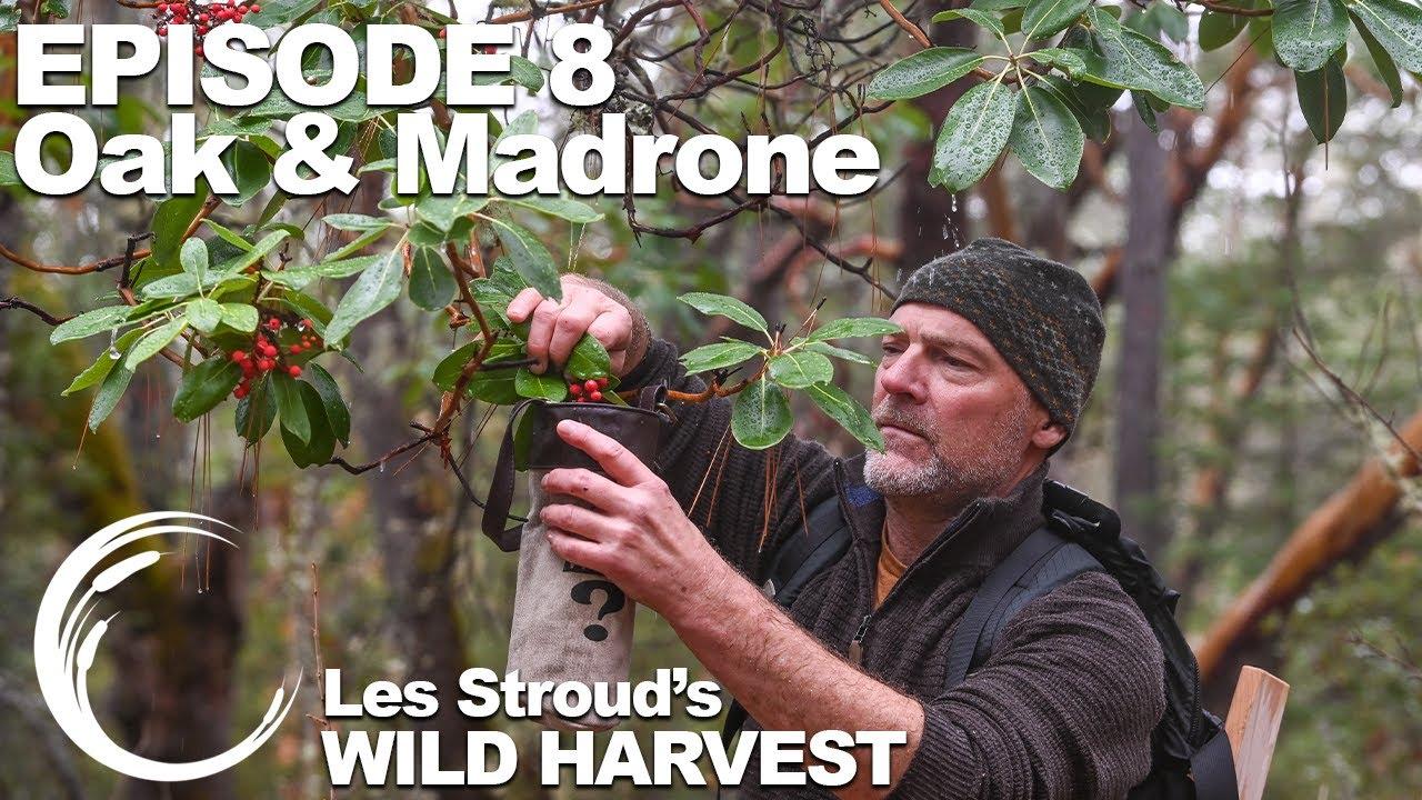 Download Survivorman   Les Stroud's Wild Harvest   Season 1   Episode 8   Oak & Madrone