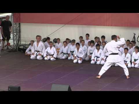 Hegaupresse : Shotokan Karate Dojo Singen am Stadtfest  2014