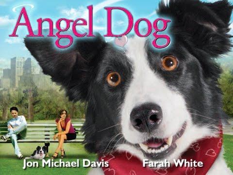 Angel Dog  Full Movie Spanish language version