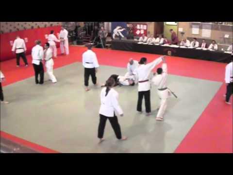 2011-12-3 Hapkido Testing Green Belt