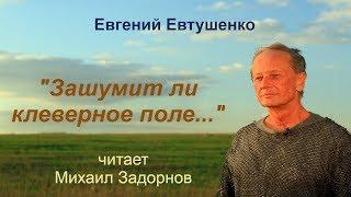"""Михаил Задорнов читает стихотворение """"Зашумит ли клеверное поле..."""""""