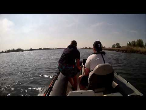 avon sr4 60hp, day boating, river amer and biesbosch holland