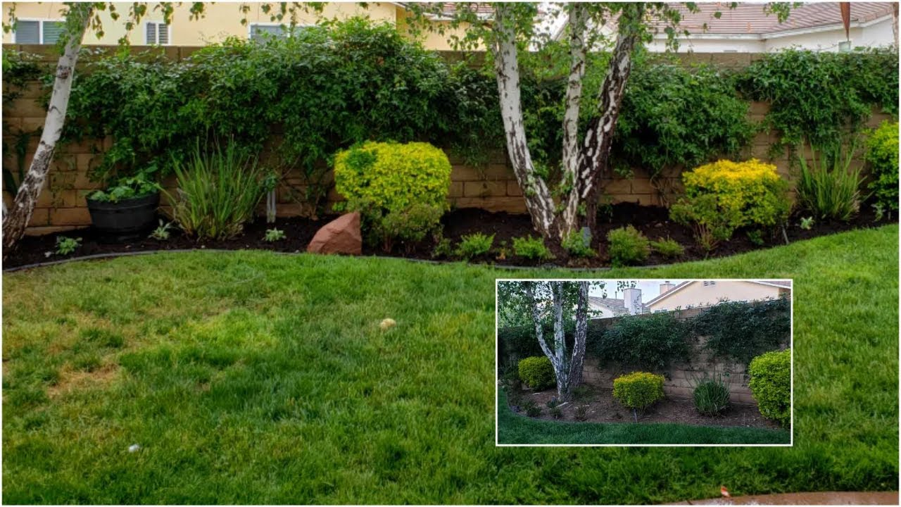 quick easy landscaping ideas under