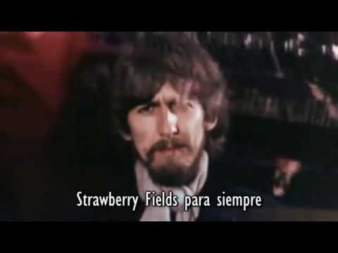 Strawberry fields forever | for 60 minutes Loop
