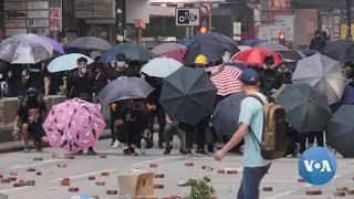 hong-kong-pro-democracy-forces-score-landslide-win