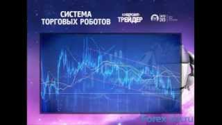 Система торговых роботов на Форекс - Видео Урок №1