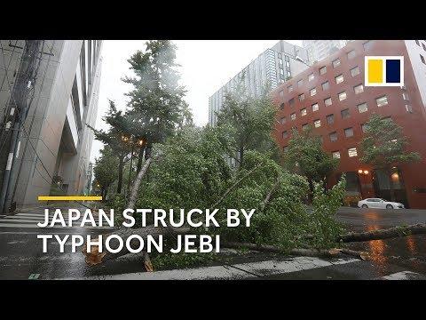 Strongest typhoon in 25 years strikes Japan