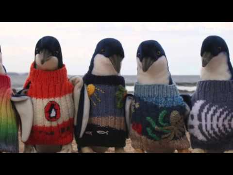 Australia's Oldest Man Famous For His Penguin Sweaters Passes Away