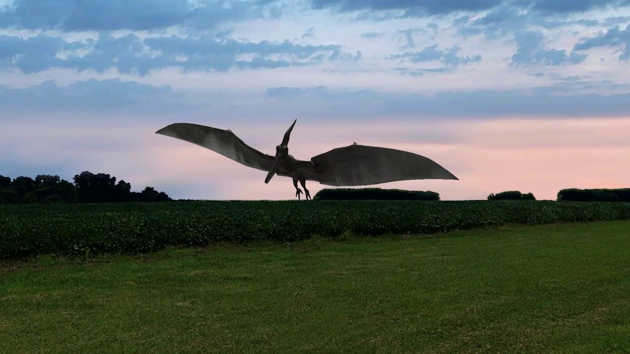 Terrasaur Pteranodon on Phoenix RC V5 5