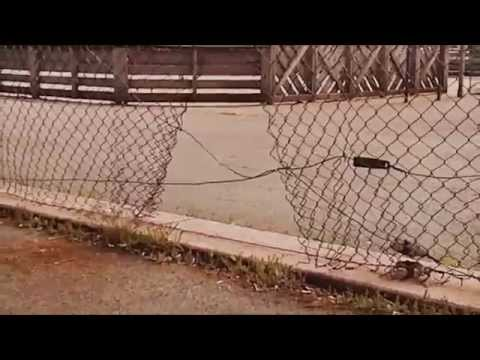 Not The Bradys XXX: Marcia Goes To College Trailer from YouTube · Duration:  2 minutes 55 seconds