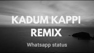 Kadum kapi dilbar remix with lyrics