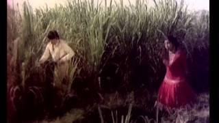 Kannada Hit Songs - Aallae Nillu Nillaioo From Bahaddur Gandu