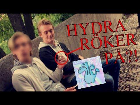 Hydra röker PÅ?! - Hydra Exposed (BILDER)