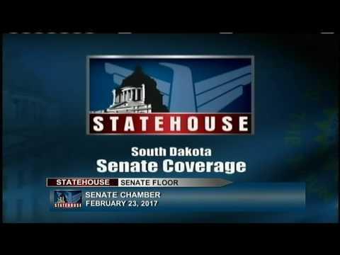 South Dakota Senate - LD27