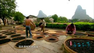 Huangyao Fermented soya beans (dou-chi)黄姚豆豉