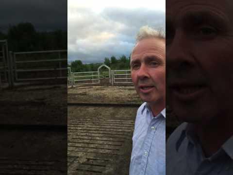 County Laois Dairy Farmer's simple parlour conversion
