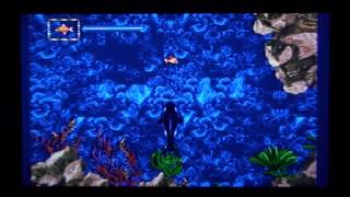 Ecco Jr. - Sega Genesis Complete Walkthrough (Retro Sunday)