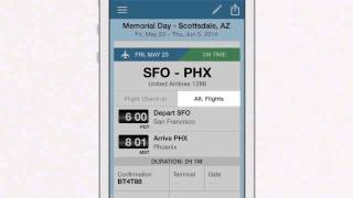 tripIt Pro Alternate Flights Demo & Testimonial
