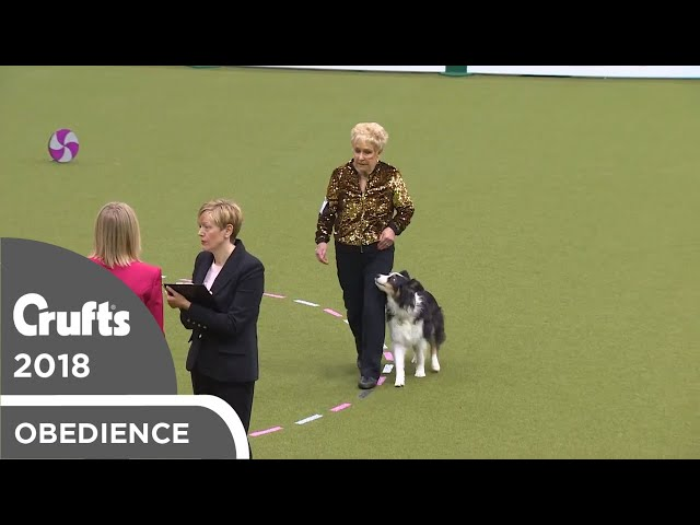 Obedience - Bitch Championship - Part 2 | Crufts 2018
