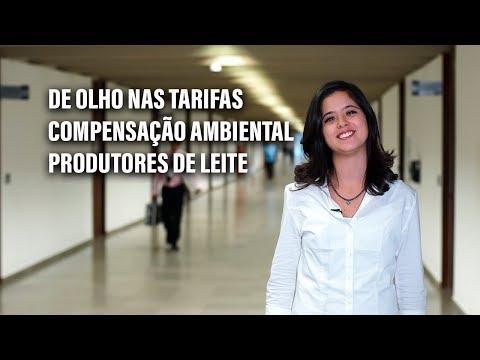 Transparência nas tarifas de serviços públicos e compensação ambiental em destaque