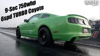 Mean...Green... Stick Shift Turbo Coyote | 9sec Mustang 5.0L |