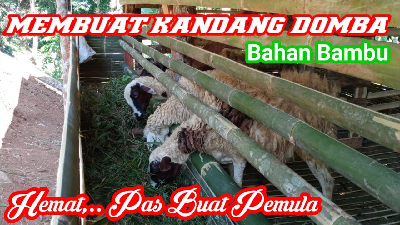 Membuat kandang Domba dari Bambu,. Mudah, Cepat, Hemat ...