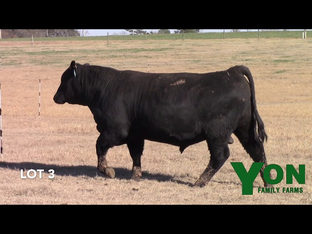 Yon Family Farms Lot 3