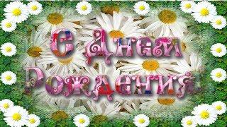 С Днем Рождения! Поздравления с Днем Рождения! В подарок цветы ромашки