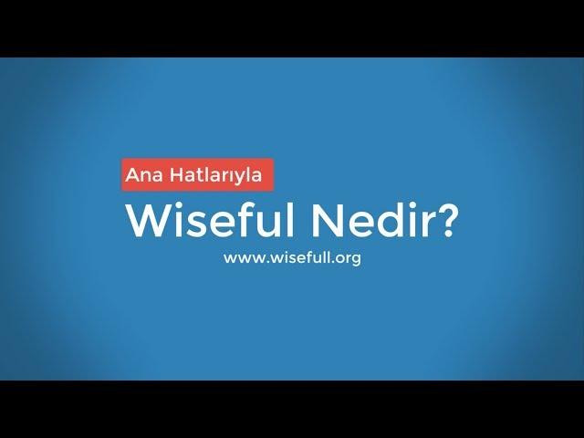 Ana Hatlarıyla Wisefull Nedir?