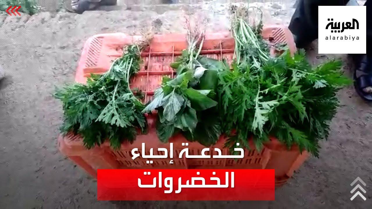 احذروا.. طريقة خطيرة لتنشيط الخضروات الذابلة  - نشر قبل 3 ساعة