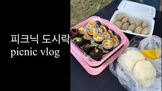 피크닉 도시락 picnic vlog
