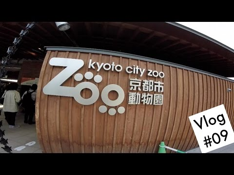 Vlog #09 Kyoto City Zoo