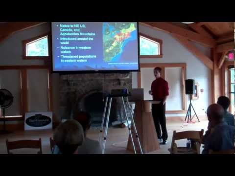 Tin Mountain Conservation Center - INTERNSHIP Presentations