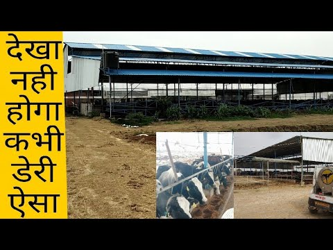 High-tech Dairy Farm in Bihar । All Machinery From Germany