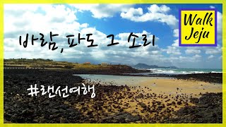Walk Jeju [제주도여행/조천해안도로]제주도여행 …