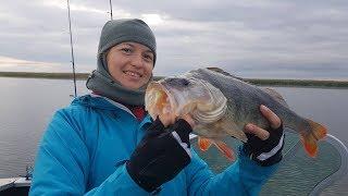 Рыбалка на Днепре! Кизомыс! Часть 2