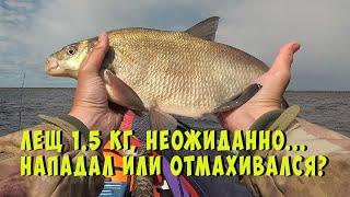 Оз Волоярви Места красивые а что с рыбалкой