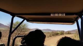 ピラネスバーグ国立公園 南アフリカ共和国 世界一危険な街 ヨハネスブルグから230km