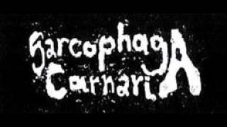 Sarcophaga Carnaria - Untitled 3