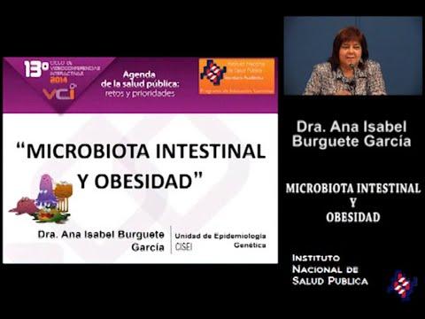 08 - Obesidad  infantil y el papel de la microbiota intestinal