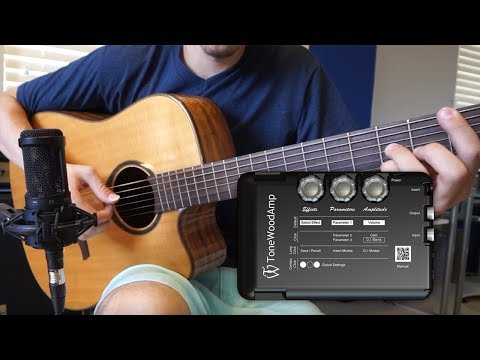 TONEWOOD AMP quick demo/review by Michael Hermes