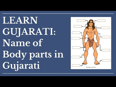 List Of Body Parts In Gujarati