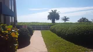 International Palms resort path to the beach